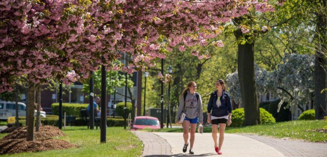 students walking through metro campus