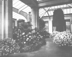 The Orangerie