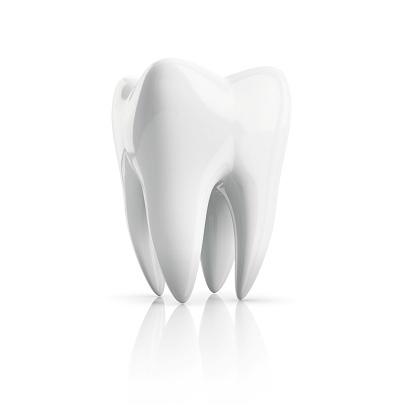 Tooth, illustration.
