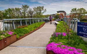 A person in the distance walks on the spirit bridge.